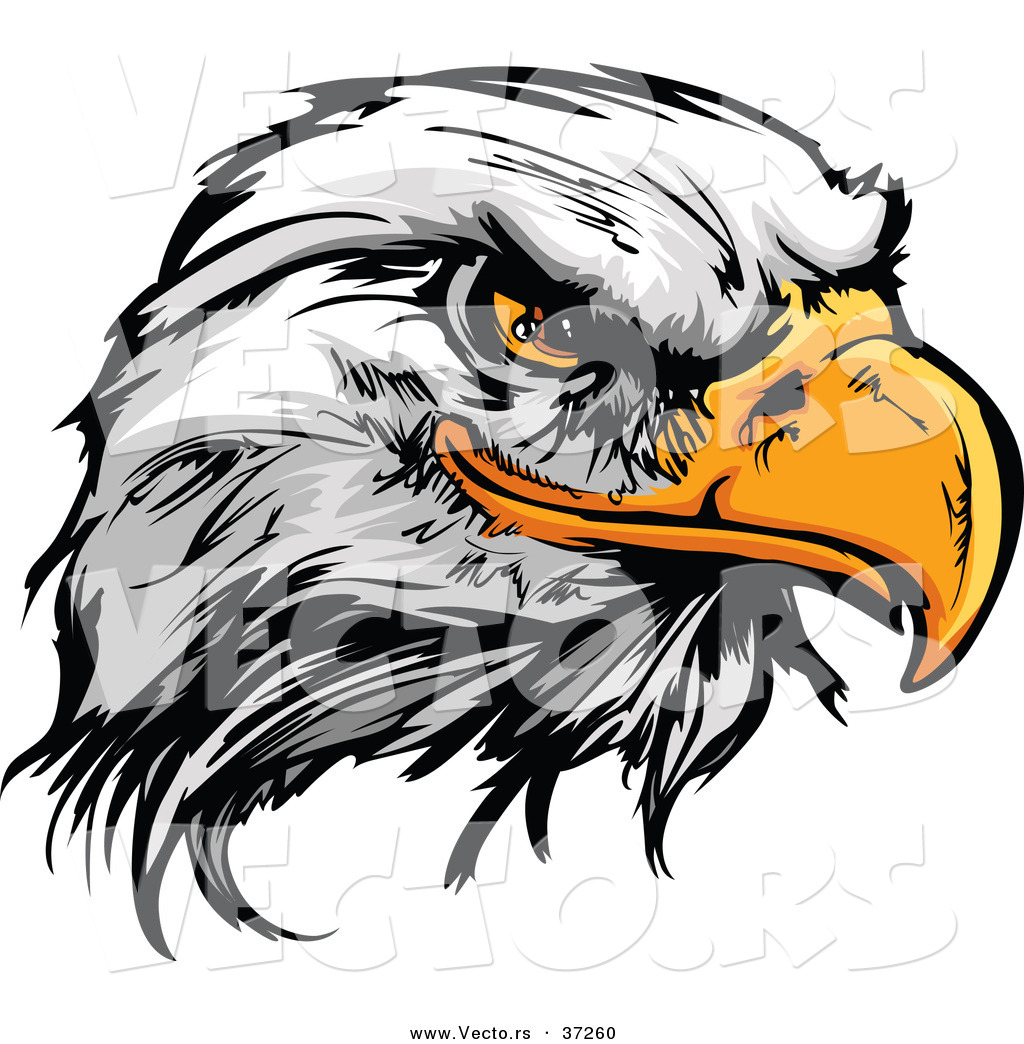 Logo clipart eagle Logos Search eagle  Art