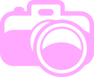 Photography clipart pink camera Pink com Clker  at