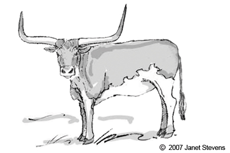 Longhorn Cattle clipart Texas Clipart Clipart longhorn texas