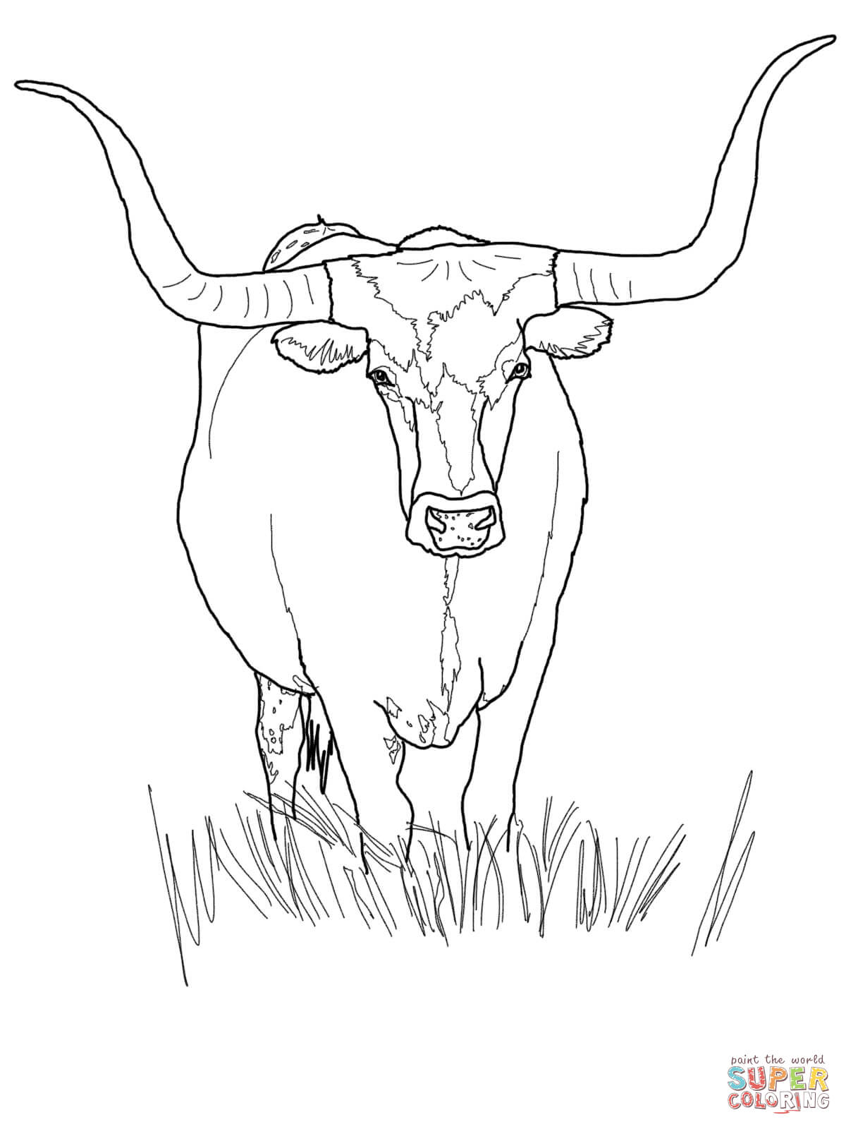 Longhorn Cattle clipart Texas Cattle Realistic Texas Longhorn