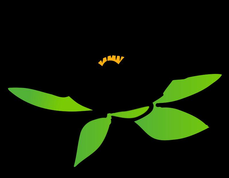 Lotus clipart Lotus Art on Free Lotus