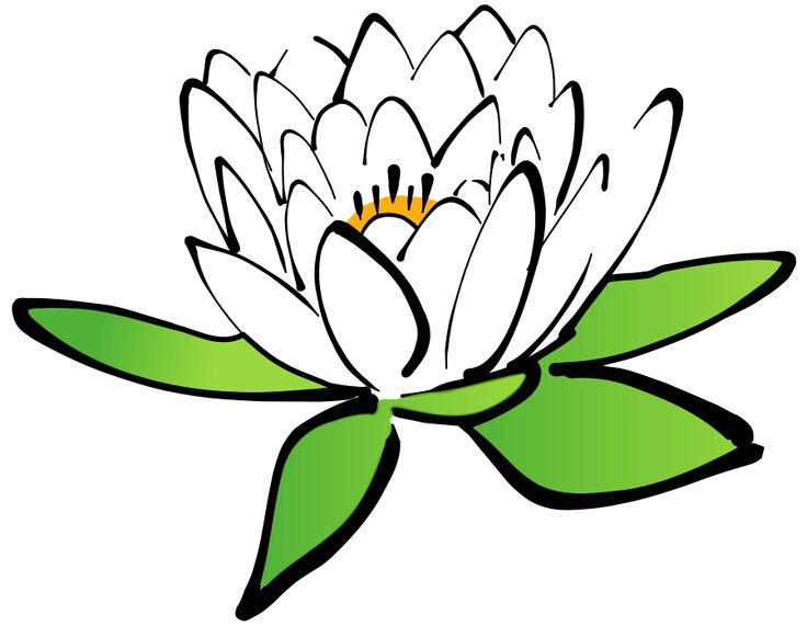 Scenery clipart lotus flower #4