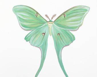 Luna Moth clipart Art Moth Print art moth