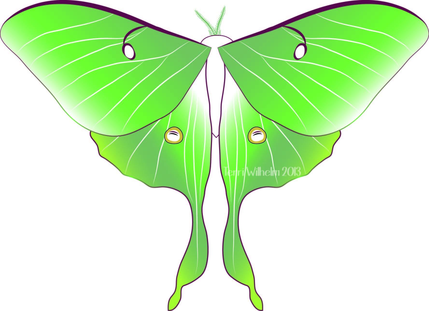 Luna Moth clipart Terri's moth monarch Notebook luna