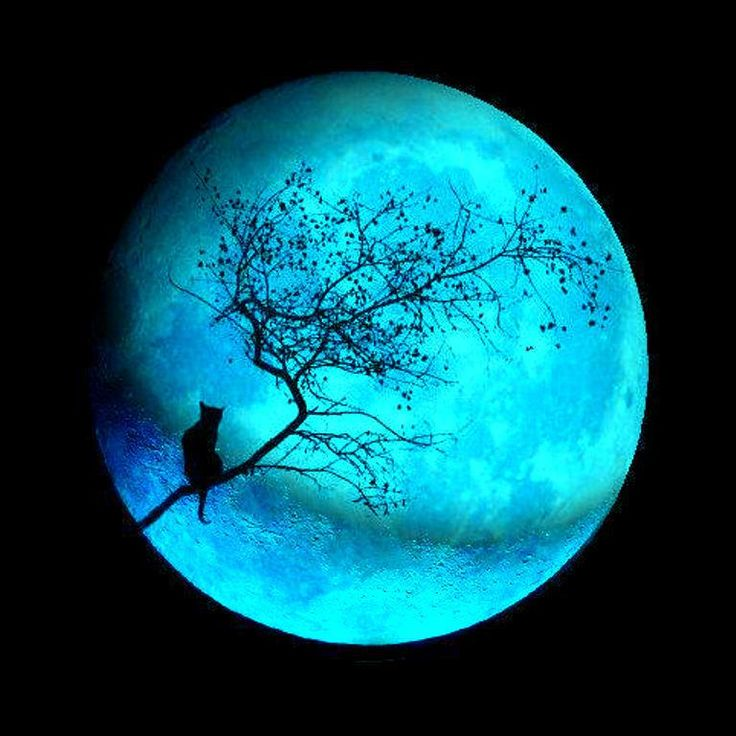 Lunar clipart blue moon Rare and images Pin Pinterest