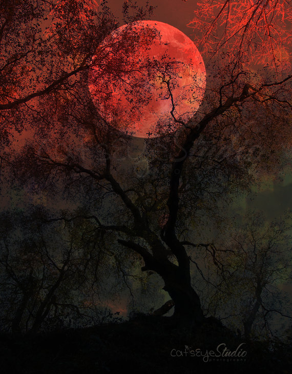 Lunar clipart creepy Forest Art BLOOD Tree Moon