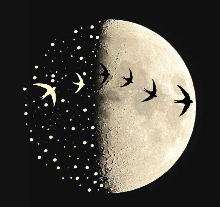 Lunar clipart goodnight moon Best art Moon ideas 25+