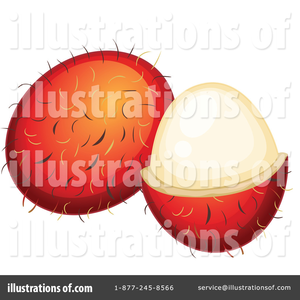 Lychee clipart By Clipart Lychee colematt #1120768