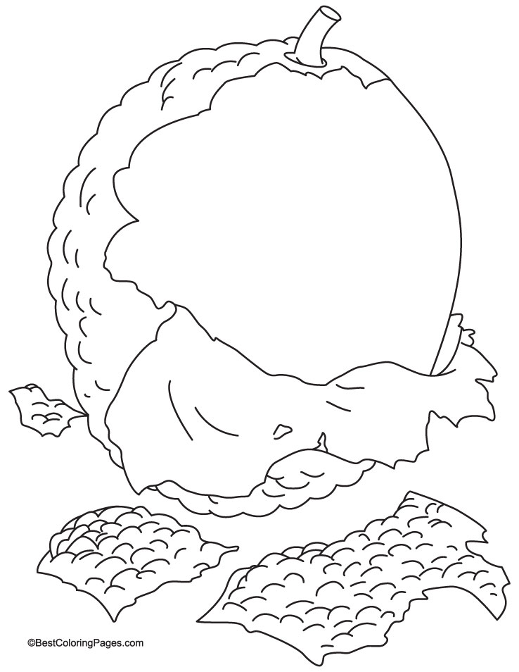 Lychee clipart #Lychee 4 Pages Lychee Coloring