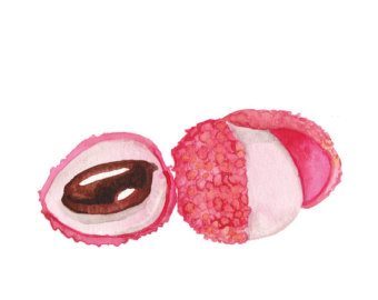 Lychee clipart lychee nut Lychee Etsy Print Lychee UK