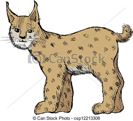 Lynx clipart White of Search  Clip
