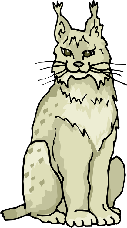 Lynx clipart Lynx Lynx Clipart Free Cat