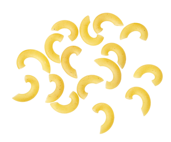 Macaroni clipart elbow macaroni Elbow Best and Test noodles