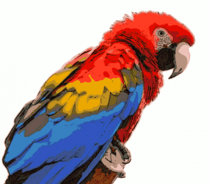 Macaw clipart Scarlet Macaw Clip Scarlet Clipart