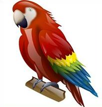 Macaw clipart Macaw Clipart Macaw Free