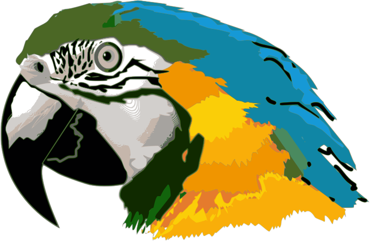 Macaw clipart Use your reference Are colorful