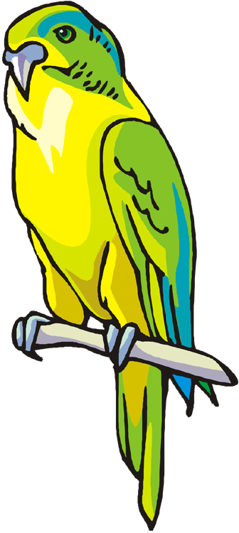 Yellow clipart parakeet Free Free Green Macaw Parrot