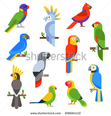 Pigeon clipart air animal And and Cartoon Cartoon Tropical