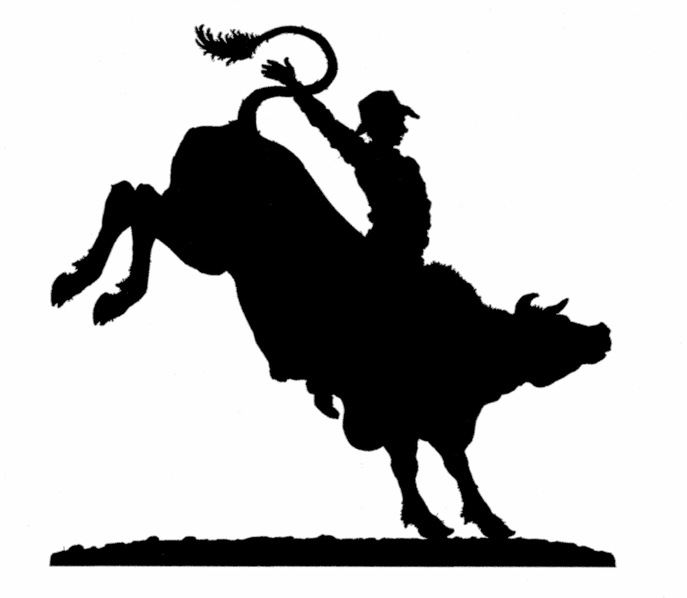 Bull clipart rodeo bull Clip Clip Bull Art on