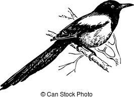 Magpie clipart Magpie Bird tree magpie Clip