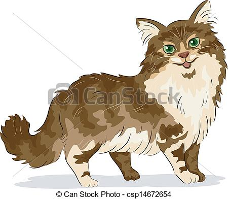 Maine Coon clipart Clipart of Coon Coon Maine