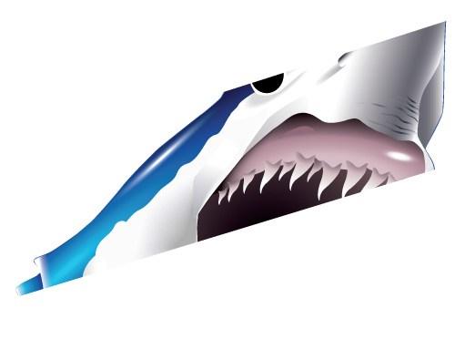 Mako Shark clipart Illustration Wildlife Illustration Vector Marine