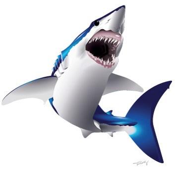Mako Shark clipart Art  vector shark Custom