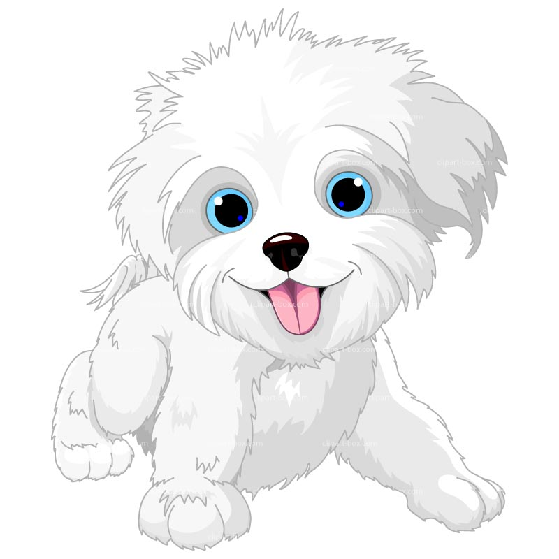 Maltese clipart Clipart clipart clip Collection