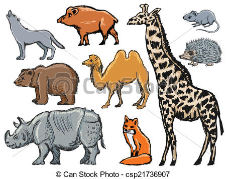 Mammal clipart Clipart Coyote Mammals Collection