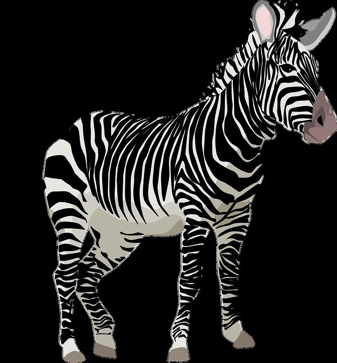 Wildlife clipart hans Max Wildlife Pixel Safari Africa