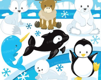 Baby Animal clipart arctic animal #7 clipart Download Arctic drawings