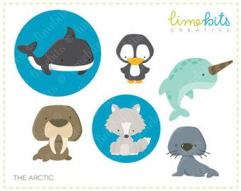 Baby Animal clipart arctic animal Clip Art UK Arctic Etsy