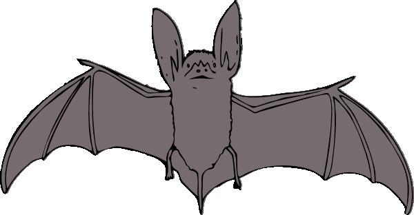 Animl clipart bat Art clipart image Clip Cliparts