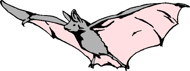 Bird clipart bat Clipart Bat Panda Bat%20Clip%20Art Free