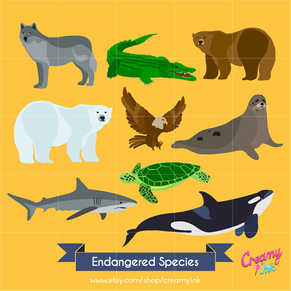 Animal Kingdom clipart endangered animal Art Vector Wolf Clip Illustration