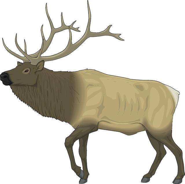 Wildlife clipart moose antler Body Pixel Antlers Mammal Animal