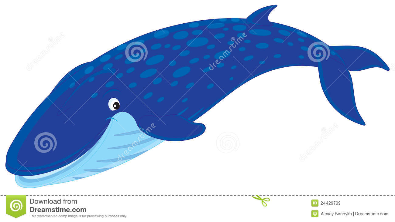 Blue Whale clipart gray whale Images Free Clip gray%20whale%20clip%20art Clipart