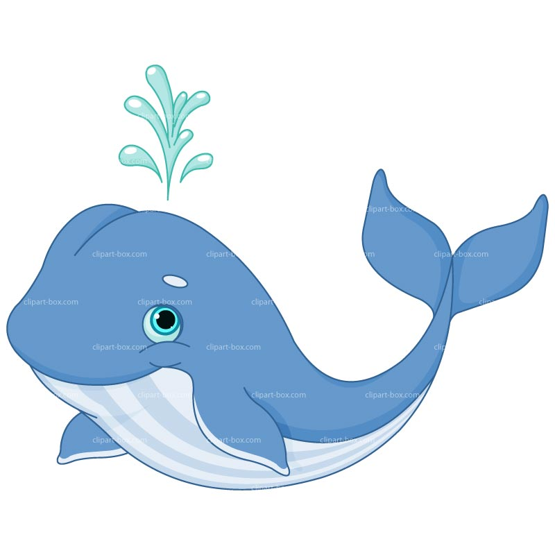 Blue Whale clipart cute baby dolphin Free design Royalty vector CLIPART