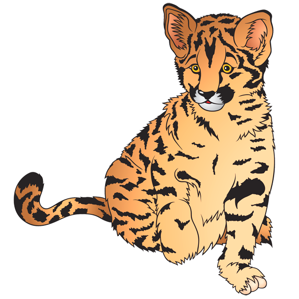 Tiiger clipart zoo animal #5