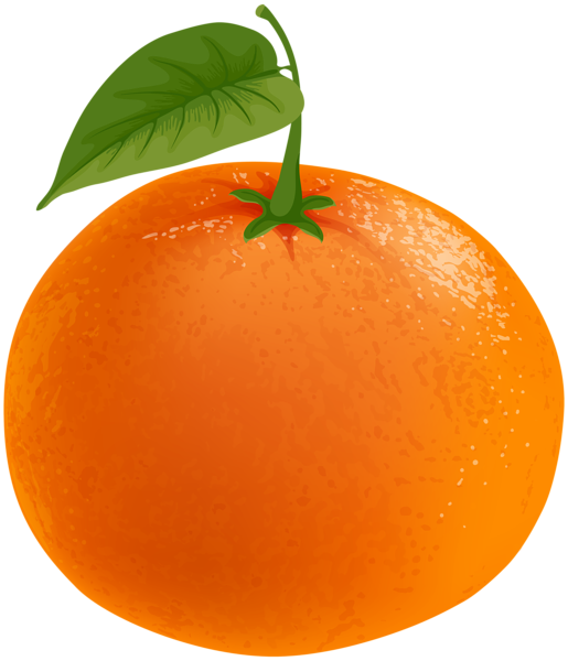 Mandarin clipart Updates Recent 0 Gallery 0