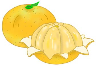 Mandarin clipart Mandarin (25+) art clip orange