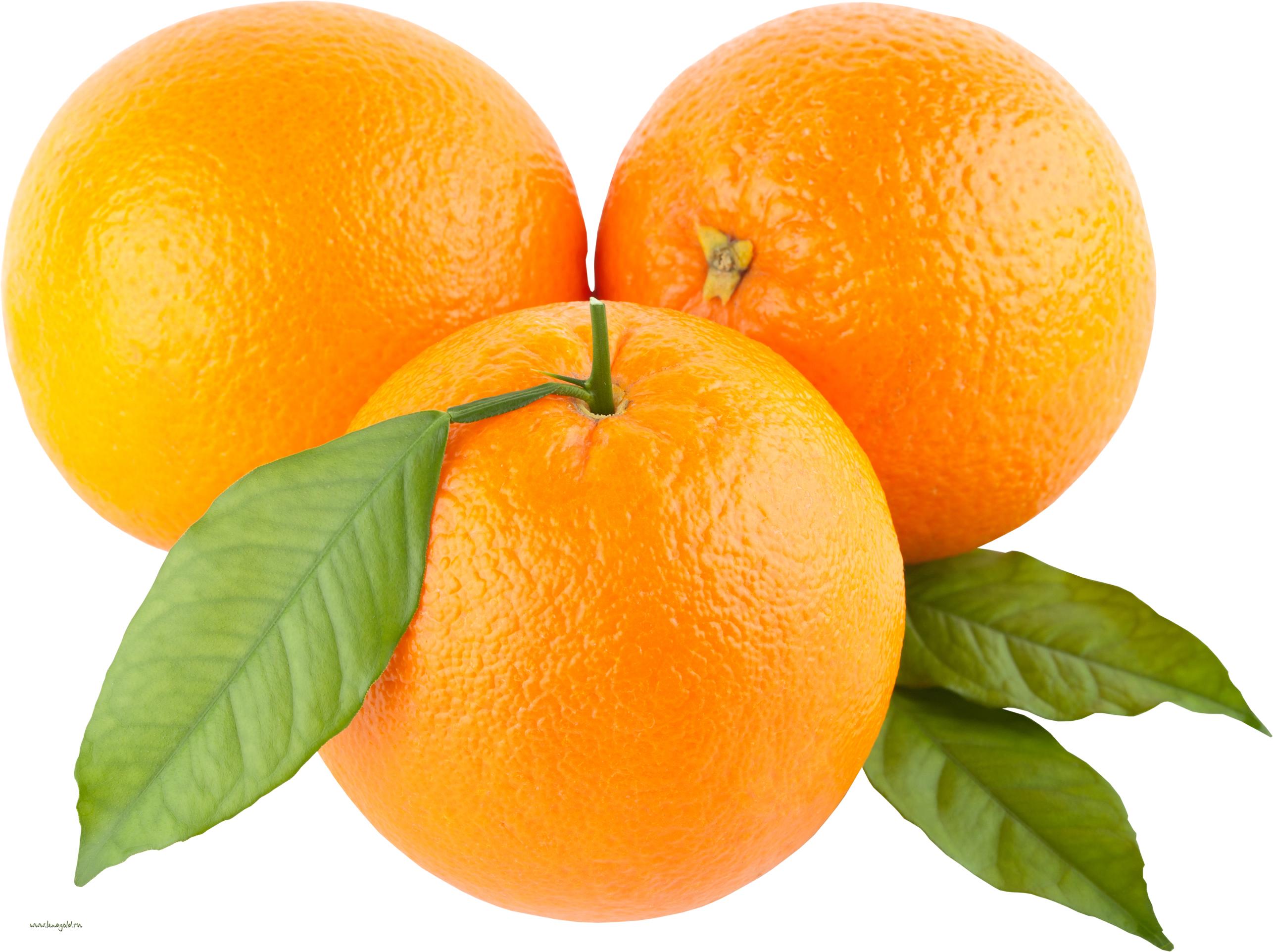 Mandarin clipart diet Clipart Orange Images Free Clip