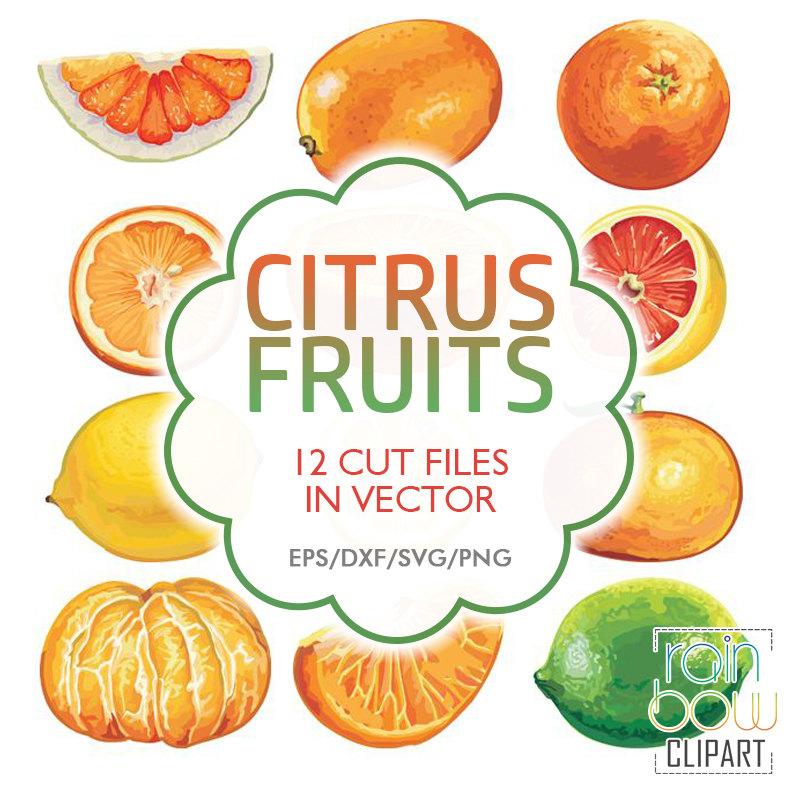 Mandarin clipart diet Svg Clipart is Lemon Fruits
