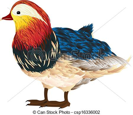 Mandarin clipart chinese new year decoration Mandarin Little Illustration drawing duck