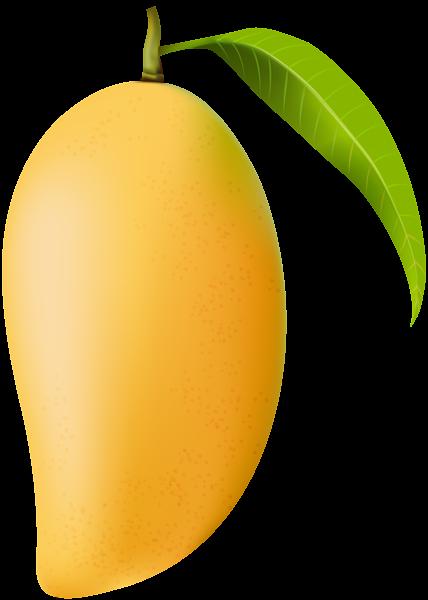 Mango clipart Image Mango Clip Art Mango