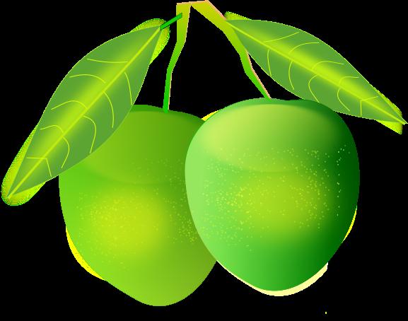 Mango clipart Art Free Use Clip Free