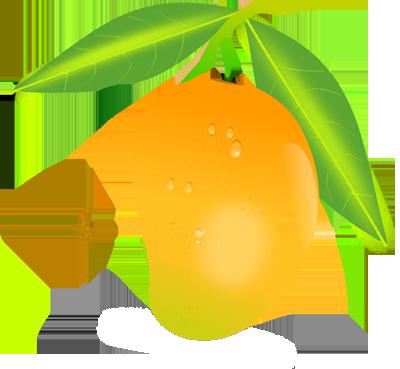Mango clipart Download Mango Free free Mango