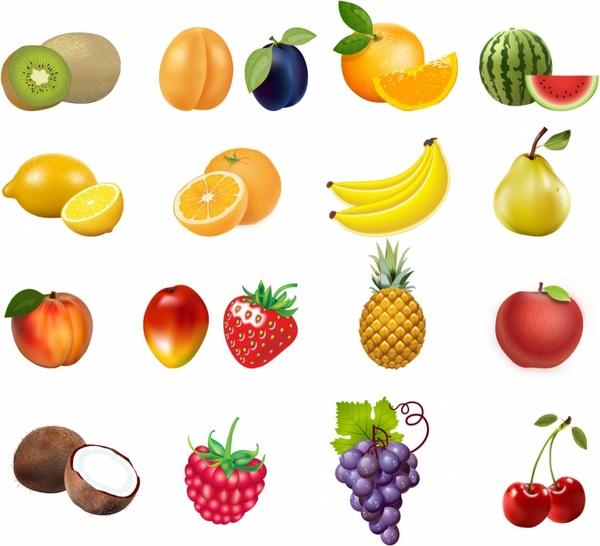 Mango clipart group Free of Set Mango