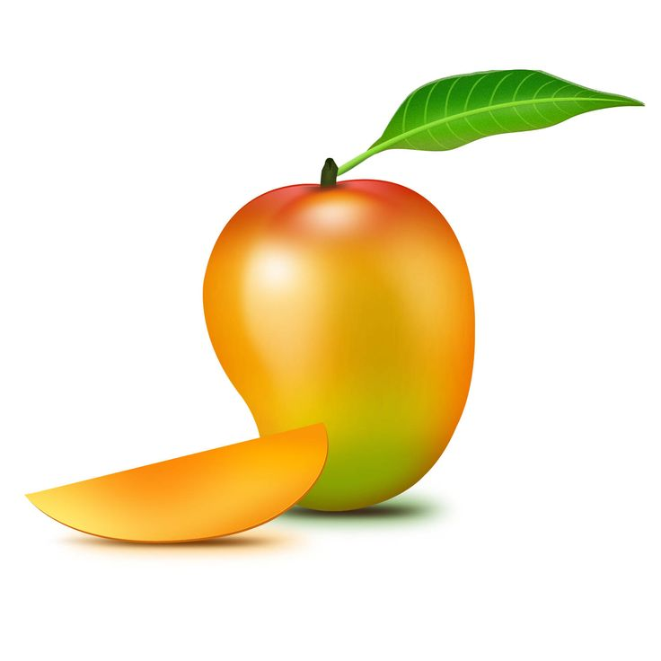 Mango clipart logo > Clip Mango For Portfolio