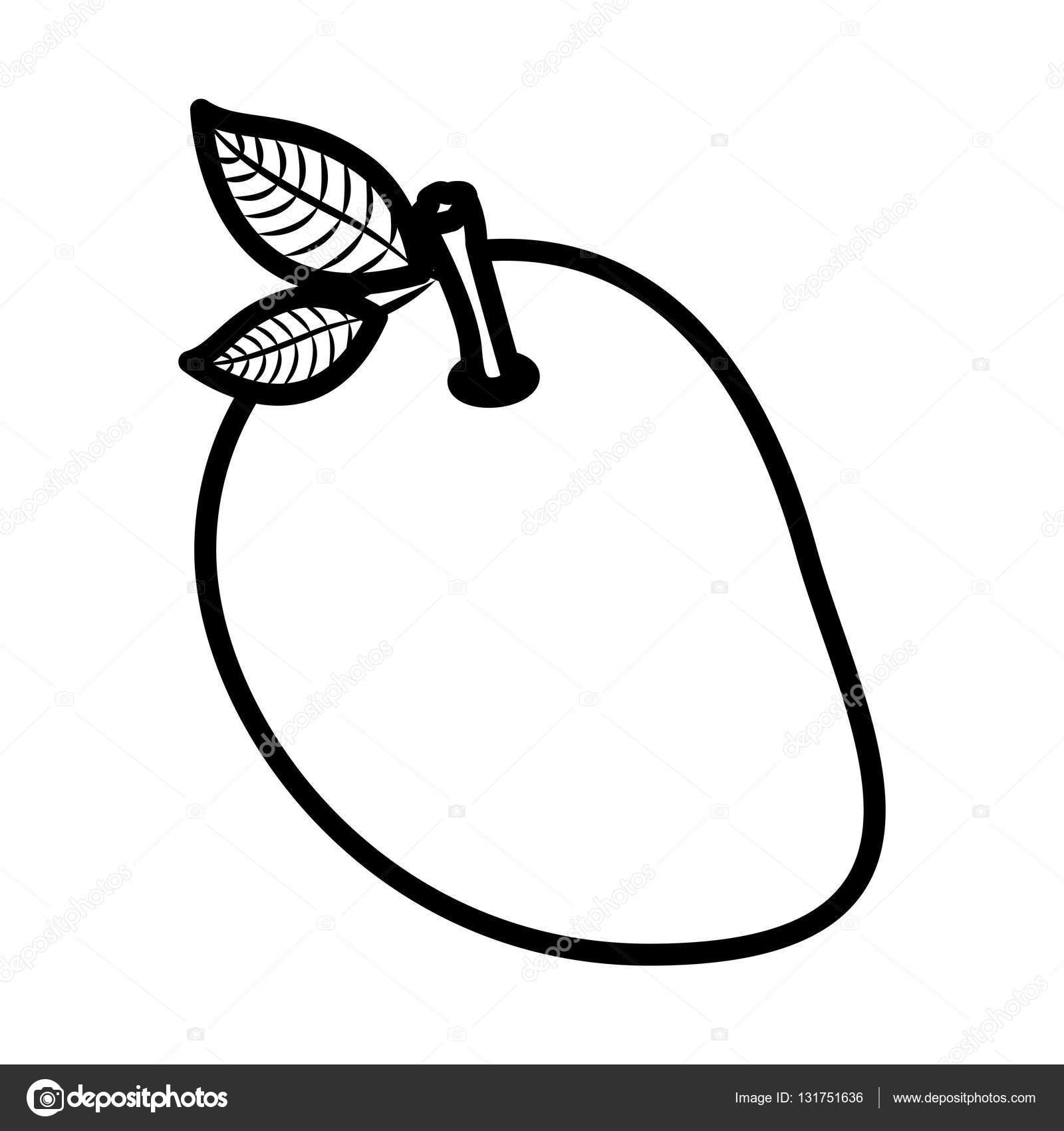 Mango clipart mango fruit Vector Stock #131751636 mango #131751636
